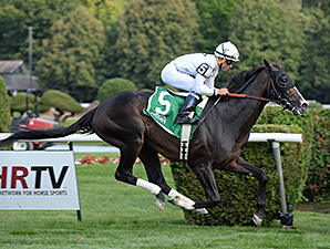 Tourist wins the 2014 Sir Cat Stakes at Saratoga.