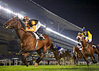 Game Trade Storm Denies Musir in Zabeel Mile