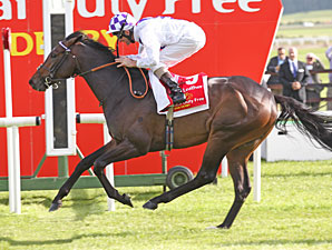 Trading Leather Wins Irish Derby; Ruler Flops