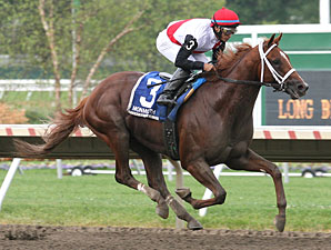 Travers or King's Bishop Next for Trappe Shot