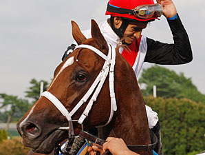 Top Horses Entered at Belmont, Delaware