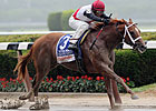 Trappe Shot Seeks Grade I Win in Vanderbilt