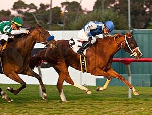 Travesura wins the 2012 Miesque.