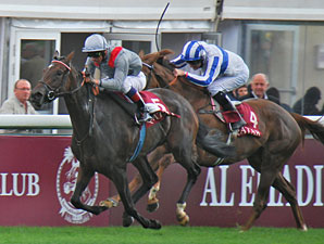 Treve an Arc Favorite After Prix Vermeille