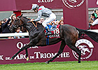 Arc Winner Treve is Cartier Horse of the Year