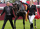 Treve to Stay in Training, 2015 Arc is Goal