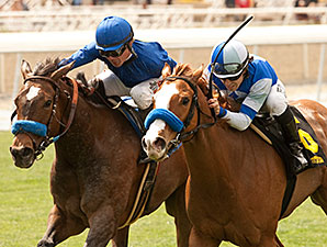 Tribal Spy wins the 2014 Las Cienegas.