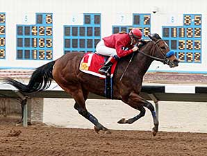 Tricky R. wins the 2014 Russell and Hellen Foutz Distaff Handicap.