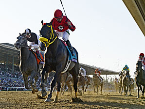 Trinniberg wins the Breeders' Cup Sprint.