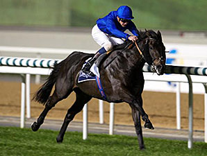 True Story wins the 2015 Singspiel Stakes Presented By Longines Conquest Classic Gents at the Dubai World Cup Carnival.