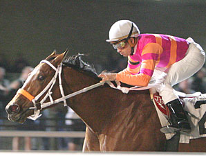 Truth and Justice wins the 2009 Presque Isle Debutante.