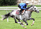 Turallure Works Five Furlongs at Keeneland
