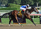 Grade I Winner Turbulent Descent Retired
