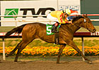 Turbulent Descent Tries Dirt in Las Virgenes
