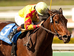 Turbulent Descent wins the 2011 Santa Anita Oaks.