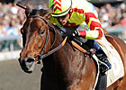 Turbulent Descent Soars to Beaumont Triumph