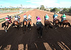 60th Season Set for Turf Paradise