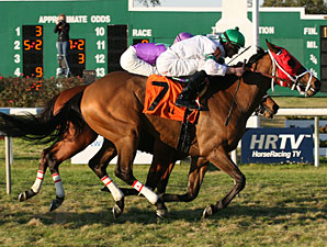Turfiste wins the 2009 Black Gold.