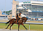 KTDF Money Leads to Turfway Purse Adjustment