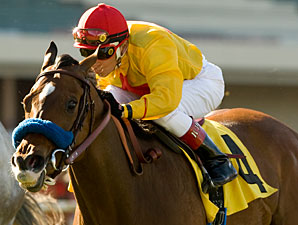 Tuscan Evening wins the 2010 Gamely.