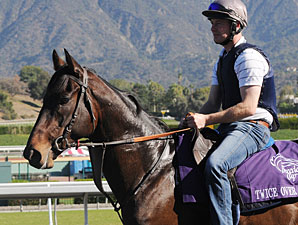 Twice Over at the 2009 Breeders' Cup