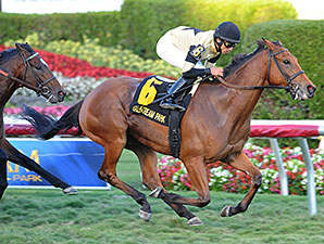 Twilight Eclipse wins the 2014 Mac Diarmida Stakes.