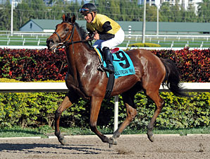 Twilight Eclipse wins the 2013 Pan American (come back).