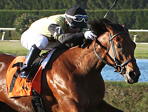 Twilight Eclipse Seeks Second McKnight Win