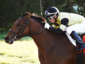 Twilight Eclipse wins the 2012 W. L. McKnight.