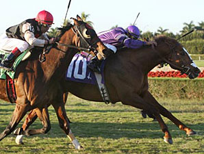 Twilight Meteor Pulls Tropical Turf Upset