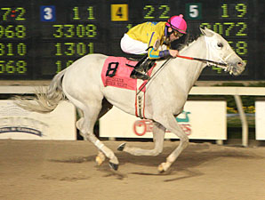 Twilight Ross wins the 2010 Premier Night Gentlemen Starter.