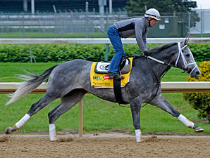 Twinspired jogging at Churchill Downs 5/4/2011.
