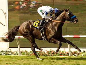 Twirling Candy wins the 2010 Del Mar Derby.