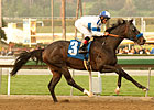 Twirling Candy Favored in Pacific Classic