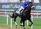 &#39;Salsa&#39; Spicy in Godolphin Mile Victory