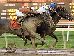 Ulanbator wins the Michael G. Schaefer Memorial Stakes.
