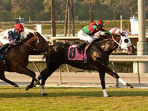 Ultimate Eagle wins the 2011 Oak Tree Derby.