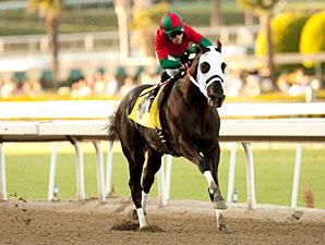 Ultimate Eagle wins the 2012 Strub.