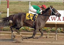 Unbridled Belle Chimes for Pletcher in Del 'Cap
