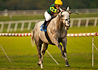 Unbridled Command Wins Hollywood Derby