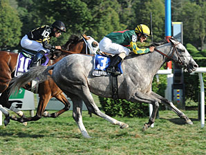 Unbridled Command Gives Dominguez Record