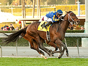 Unbridled's Note wins the Daytona Stakes.