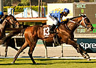 Unbridled&#39;s Note Takes Eddie D in Turf Debut