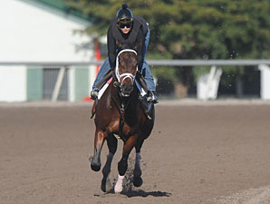 Pletcher: Uncle Mo 'On Track' for Derby