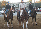 Steve Haskin's Derby Dozen: January 31, 2011