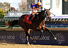 Uncle Mo to Make 3YO Debut at Gulfstream