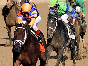 Uncle Mo wins the 2010 BC Juvenile.