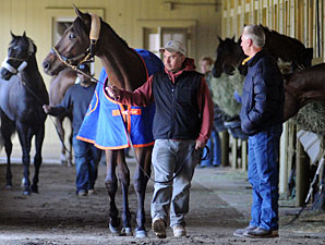 Uncle Mo arrives at Belmont on April 5, 2011.