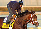 Uncle Mo Gallops in Return to Track