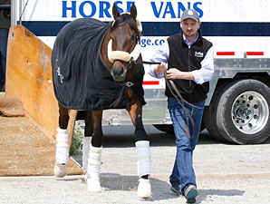 Uncle Mo, Mucho Macho Man Arrive at Churchill